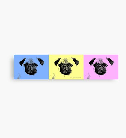 mops puppy trilogy Canvas Print