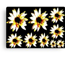 Daisy Poster Canvas Print