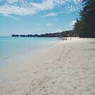 Sandy Beach by tropicalsamuelv