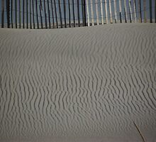 Sand Ripples by Carl H. Heckman
