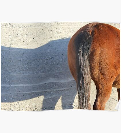 Horse's Hiney Poster