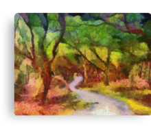 Muckross Woods (2) Canvas Print