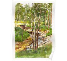 Mullum Mullum Creek at Eltham, Victoria Poster