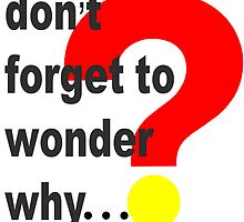 Don't forget to wonder why. by Esme  Kristl