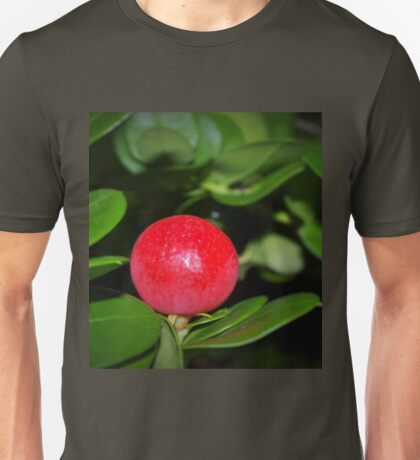 The fruits of RedBubble Unisex T-Shirt