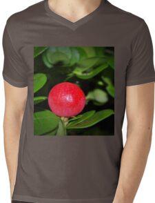The fruits of RedBubble Mens V-Neck T-Shirt