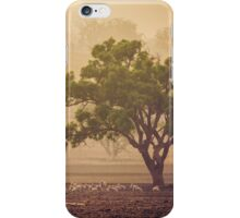 Autumn Merinos iPhone Case/Skin