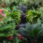 Tropical garden by Halobrianna