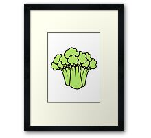 Vegetables of broccoli nature garden Framed Print