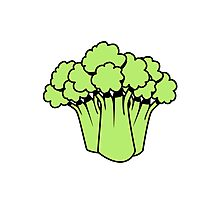 Vegetables of broccoli nature garden Photographic Print