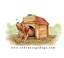 Sad Sausage Dog Photographic Print