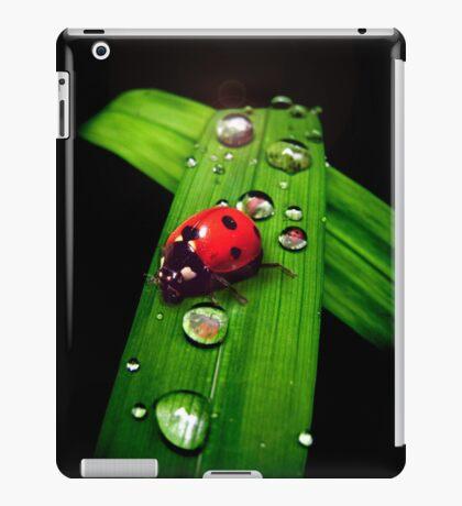 Ladybird iPad Case/Skin
