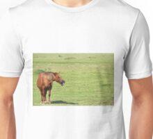 brown horse neigh Unisex T-Shirt