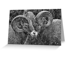 Rebel Rams in grey Greeting Card