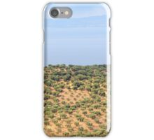 hill with olives trees iPhone Case/Skin