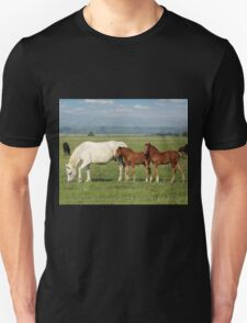 white horse and brown foals in pasture Unisex T-Shirt