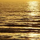 Low sun on the water by Steve