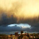 Sky Fall .. by Berns