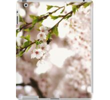the bumble bee in the cherry tree iPad Case/Skin