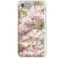 soft spring cherry tree iPhone Case/Skin