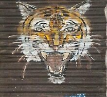 Tiger by StreetArtCinema