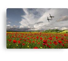 Fighter Pass Canvas Print