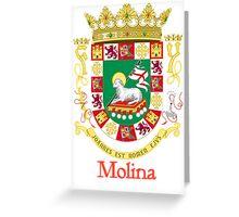 Molina Shield of Puerto Rico Greeting Card