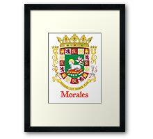 Morales Shield of Puerto Rico Framed Print