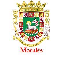 Morales Shield of Puerto Rico Photographic Print