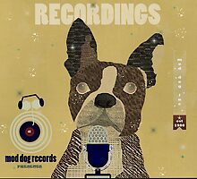 boston bulldog recordings  mod dog records by bri-b