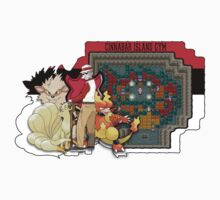 Pokemon - Cinnabar Island Gym (Blaine) Kids Clothes