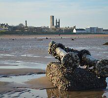 Barnacles On Boat Debris by Adrian Wale