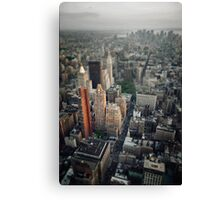 The Giant Over The Big Apple Canvas Print