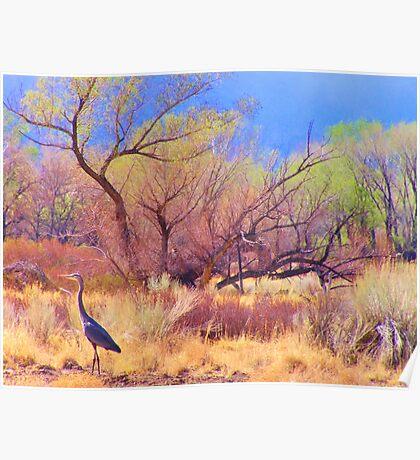 Crane Territory Poster