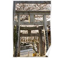 cherry blossom and torii (another view) Poster