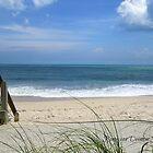 Beach vibes - early spring day by Ronee van Deemter