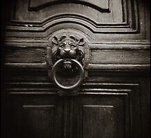 { lion at the door } by Lucia Fischer