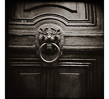 { lion at the door } Photographic Print