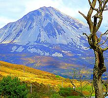 Mount Errigal In Late Summer by Fara