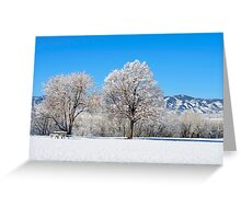 Morning After The Snowstorm Greeting Card