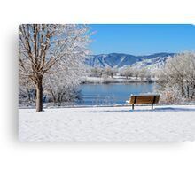 Morning After The Blizzard Canvas Print