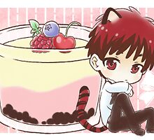 Tiger Kagami and Pudding by TEAMJUSTICEink