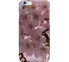 Pink Spring - A Cloud of Delicate Cherry Blossoms iPhone Case/Skin