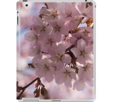 Pink Spring - A Cloud of Delicate Cherry Blossoms iPad Case/Skin
