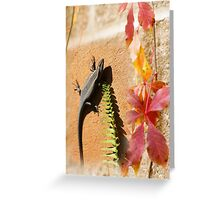 African Striped Skink Greeting Card