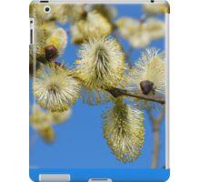 Willow Catkins iPad Case/Skin
