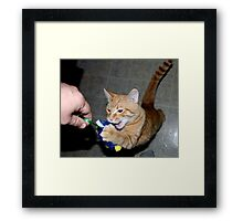 GIVE ME MY MOUSE! Framed Print