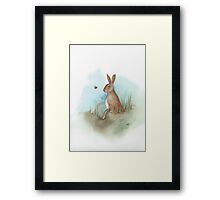 Hare and Bee Framed Print
