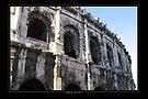 Arena - Arles by Roberta Angiolani