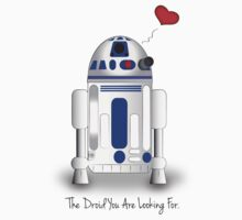 The Droid You are Looking For by rainbowdarkness